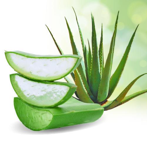 Aloe Vera en Aloe Beta