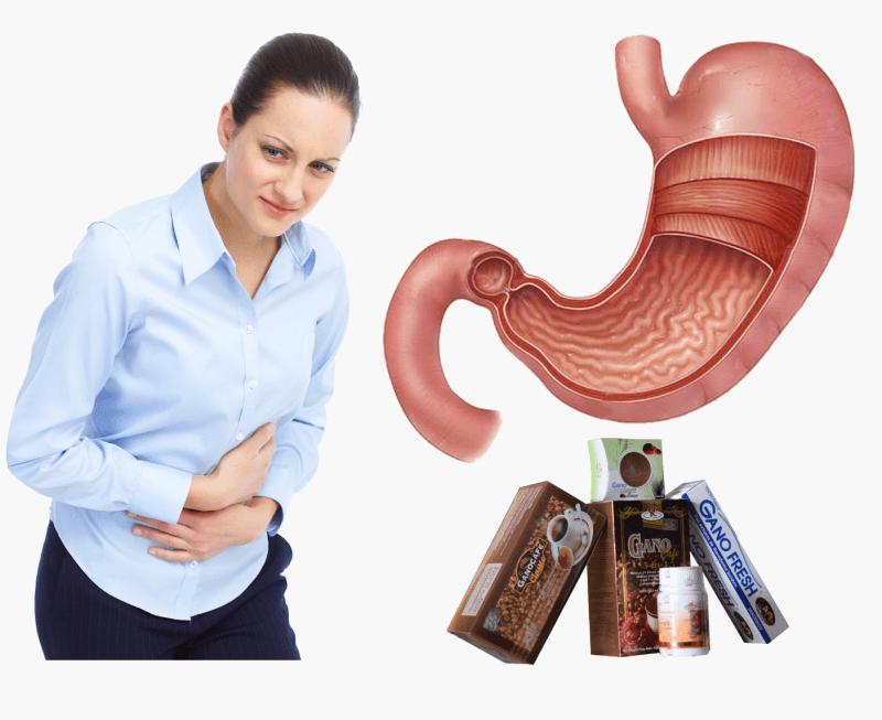 Ganoderma Lucidum para tratar la gastritis